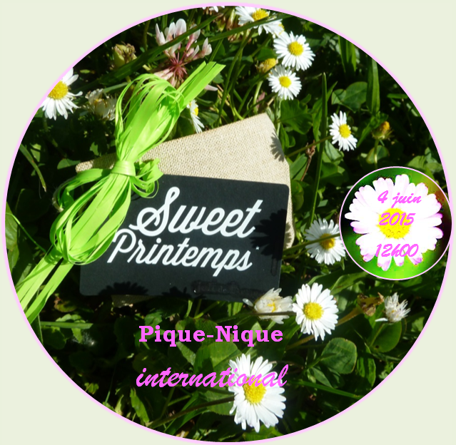 Pique-nique international 2015
