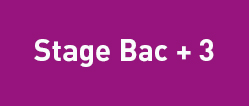 stage Bac+3GB