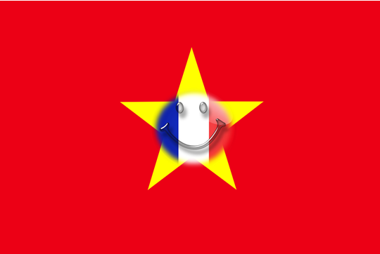 Vietnamese French Flag